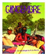 Guyane_depistage - application/x-pdf