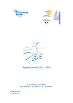 Diese : rapport annuel 2012 - 2013 [ - application/x-pdf