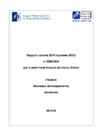 Rapport national 2014 (données 2013) à l'EMCDDA par le point focal français du réseau Reitox  - application/x-pdf