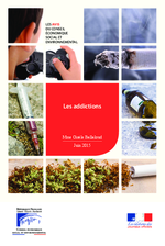 Les addictions - application/pdf